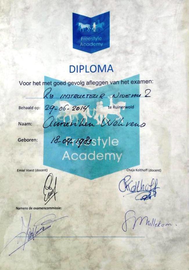 diploma Niv.2